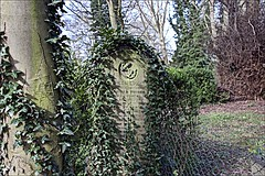 General Cemetery (brianarchie65) Tags: generalcemetery cemeteries brokenheadstones headstones graves grave dereliction trees shrubs bushes hull geotagged brianarchie65 kingstonuponhull cityofculture eastyorkshire unlimitedphotos ngc flickrunofficial flickr flickruk flickrcentral flickrinternational ukflickr neglected shameful