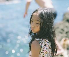 Diving (Yuki Ishikawa Photography) Tags: 西伊豆 夏 フィルム写真 中判フィルム 中判カメラ バケペン 6x7 filmphotography summer pentax67 pentax67ⅱ