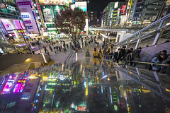 URBAN REFLECTION (ajpscs) Tags: ©ajpscs ajpscs 2019 japan nippon 日本 japanese 東京 tokyo city people ニコン nikon d750 tokyostreetphotography streetphotography street seasonchange winter fuyu ふゆ 冬 shitamachi night nightshot tokyonight nightphotography citylights tokyoinsomnia nightview dayfadesandnightcomesalive strangers urbannight attheendoftheday urban walksoflife tokyoscene anotherday tokyoatnight urbanreflection