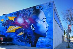 Create (remiklitsch) Tags: beautifyearth create mural pico santamonica losangeles city urban street streetart seldog rubenrojas nikon remiklitsch color art january 2019 newyear blue yellow inspiration