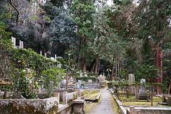 SDQ_1253 (koyaman3422) Tags: 京都 kyoto sigma sdquattro 1770mm 法然院