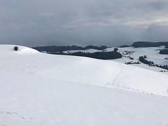 Winter 2019: Bei Baldisthal Arni - Biglen (unterhalb Gumm) (Martinus VI) Tags: winter winterlandschaft hivers schnee snow nieve neige emmental kanton canton de bern berne berna berner bernese schweiz suisse suiza switzerland svizzera swiss y190112 martinus6 martinus6xy martinus martinusvi