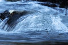 Wildes Wasser (kalakeli) Tags: wasser water 2018 oktober october rur düren riverrur langzeitbelichtung longexposure