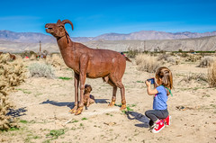 My Little Apprentice (Kevin MG) Tags: desert sculptures installation borregosprings metal art rust family granddaughter photographer ram girl young youth cute pretty little kid child adorable preschoolage adolescent landscape mh1