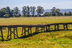 Close-up of old railway trestle bridge, west of Orbost, in eastern Victoria (Peter.Stokes) Tags: australia australian colour landscape landscapes outdoors photography skies sky summer vacations victoria water railway railroad trestlebridge trestle bridge old derelict