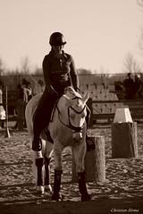 _DSC0708 (chris30300) Tags: camargue cheval