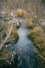 Cold Creek in Arizona (Kyle French) Tags: arizona az creek river water winter landscape