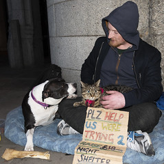 Friendly homeless guy I met with his pets (RedPlanetClaire) Tags: financial district london capital city england britain tower bridge homeless man pet cat dog