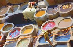 Chouwara Traditional Tannery (maios) Tags: chouwaratraditionaltannery chouwaratannery chouwara traditional tannery fez morocco fes maios sheep goat smell medina nikond7100 nikon d7100 man warker barefoottanners barefoot tanners