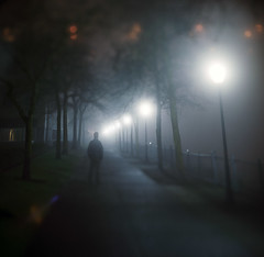 (Zeb Andrews) Tags: hasselbladflexbody kodakportra400 portland oregon nighttime foggy pacificnorthwest selfportrait tiltshift color scannedatbluemooncamera nikoncoolscan9000 mediumformat 6x6