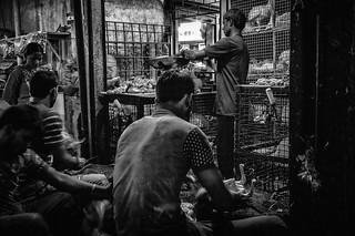 Mumbai (LXXI)