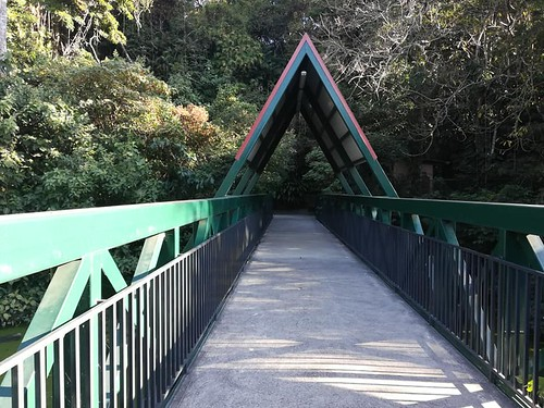 Lunada Simón Bolívar 2019