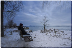 FEBRUARY 2019 NGM_0306_6916-1-222 (Nick and Karen Munroe) Tags: lake lakeshore lakefront lakeontario lakeside ice icestorm icy winter icecoldbenchesthewinterhadcomewithafiercenessthisyear blowingitsblusterybestagainsttherocksandtreesthatlinedtheshore forweekstheiceandsnowsmotheredeverythingwithinitsicyreachwinterwindssweptuplakewaterpeltingthecoast lashingoutwithaviolentfurythatsmotheredtheoutcroppingandpiersalongtheshorelinewhereoncefishermanlinedthebanksnownothingbuticeistobeseenalongthisfrozenshorelineasolitarypiersticksoutintothewaterthewavescrash pleasedonotcopymyimageoruseitonwebsites blogsorothermediawithoutmyexpresspermission©nickmunroemunroephotographyyoucancontactmekarenick23yahoocommunroedesignsphotographygmailcomoronfacebookahrefhttpswwwfacebookcommunroedesignsphotographyre bench benches jackdarlingpark jackdarling mississauga lakeshoreblvd waterscape karenick23 karenick karenandnickmunroe karenandnick munroe karenmunroe karen nickandkaren nickandkarenmunroe nick nickmunroe munroenick munroedesigns photography munroephotoghrpahy munroedesignsphotography nature landscape brampton bramptonontario ontario ontariocanada outdoors canada d750 nikond750 nikon nikon1424f28 1424 1424f28 nikon1424 nikonf28 f28 colour colours color colors