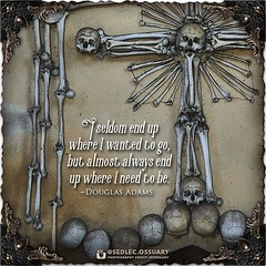 """I seldom end up where I wanted to go, but almost always end up where I need to be."" -Douglas Adams . 💀 Sign up on our mailing list for exciting special announcements! 💀 ☩ sedlecossuary.mechanicalwhispers.com ☩ ☩ Or click link in bio. :point_u (Sedlec Ossuary Project) Tags: sedlecossuaryproject sedlec ossuary project sedlecossuary kostnice kutnahora kutna hora prague czechrepublic czech republic czechia churchofbones church bones skeleton skulls humanbones human mementomori memento mori creepy travel macabre death dark historical architecture historicpreservation historic preservation landmark explore unusual mechanicalwhispers mechanical whispers instagram ifttt"