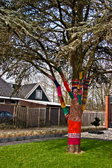 Knitted tree ... (6199) (Le Photiste) Tags: clay knittedtree nieuwehornefryslânthenetherlands fryslânthenetherlands thenetherlands nederland oddview ngc mostrelevant mostinteresting perfectview perfect beautiful aphotographersview afeastformyeyes autofocus artisticimpressions blinkagain beautifulcapture bestpeople'schoice creativeimpuls cazadoresdeimágenes canonflickraward digifotopro damncoolphotographers digitalcreations django'smaster friendsforever finegold fairplay greatphotographers groupecharlie peacetookovermyheart clapclap hairygitselite ineffable infinitexposure iqimagequality interesting inmyeyes livingwithmultiplesclerosisms lovelyflickr lovelyshot myfriendspictures mastersofcreativephotography momentsinyourlife niceasitgets nature photographers prophoto photographicworld photomix soe simplysuperb showcaseimages simplythebest simplybecause thebestshot thepitstopshop theredgroup thelooklevel1red vividstriking wow worldofdetails yourbestoftoday awesomeview awesome greatview great tree funnyfotos funny odd funnytree fun