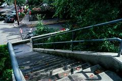 Sunday (Brian McGloin) Tags: bluemooncamera brianmcgloin cascadia leica m42 or portland summicron35mmf2 film photographer photography photojournalist scans oregon staybrokeshootfilm westhills whereislauraofoster tualatinmountains stairs
