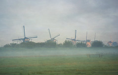 approaching the mills of Kinderdijk (kelsk) Tags: kinderdijk zuidholland holland kelskphotography mist haze molens mills weiland field fence hek textured textuur