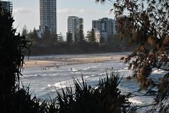 late summer (tewhiufoto) Tags: tewhiufoto nikon flickr australia nature beach d5000 qld queensland coastalliving burleigh heads burleighheads nationalpark
