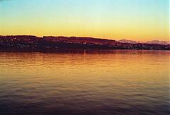 Golden Hour at Lake Zurich (Bephep2010) Tags: 2019 fresko goldenestunde haus kodakgold lakezurich minolta minoltamd50mm114 minoltax700 photoexif schweiz see switzerland winter wädenswil x700 zurich zürich zürichsee building fresco goldenhour lake kantonzürich ch
