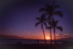 Sunset Hawaiian Style DSC_9841 (BlueberryAsh) Tags: kauai westshore sunset palmtrees colour purple beach hawaii silhoutte sun water saltpondbeach nikon nikond750 nikon24120