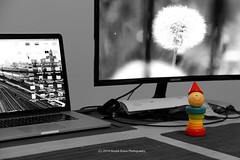 010/365 - Ready to WFH. (Sinuhé Bravo Photography) Tags: canon eos7dmarkii selectivecolor computer screen monitor toy rainbow colors babytoy