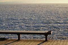 This Morning's Ice - HBM (jameskirchner15) Tags: lakehuron greatlakes ice winter packice michigan bench hbm benchmonday texture