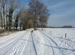 Snowscape in Woold - Achterhoek (joeke pieters) Tags: 1450735 panasonicdmcfz150 woold winterswijk achterhoek gelderland nederland netherlands holland oudebocholtsebaan bocholtsebaan landschap landscape landschaft paysage snowscape sneeuw snow
