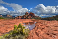 Cathedral Rock Reflection (markwhitt) Tags: markwhitt markwhittphotography arizona usa southwest sedona cathedralrock reflection water rock sandstone butte clouds cactus beautiful scenic scenery outdoors adventure travel nature landscape nikon