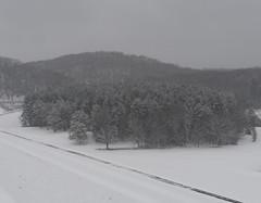 quabbinreservoir2019-81 (gtxjimmy) Tags: nikond7500 nikon d7500 winter snow quabbinreservoir swiftriver ware belchertown massachusetts watersupply newengland quabbin