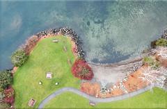 Drone - 11 (FarhadFarhad .(Farhad Jahanbani)) Tags: dji spark drone nature art painting park beach seattle bellevue kirkland flying drones dronephotography washington state