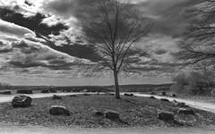 Stone circle with tree (KF-Photo) Tags: 1610 baum gegenlicht hageloch heuberg parkplatz steine steinkreis tübingen wege