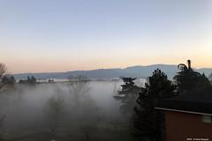 Fog (Paolo Bonassin) Tags: fog nebbia