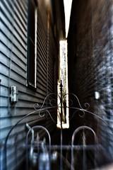 Cat Alley (timvandenhoek1) Tags: lensbabysweet35optic lensbabycomposerproii sonyilce6000 stegenevieve alley wroughtiron gate timvandenhoek midwest missouri houses buildings narrow opening