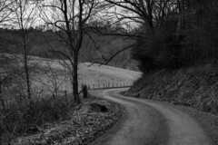 Ends in S (hutchphotography2020) Tags: mountainroad wataugacounty nc nikon scurve