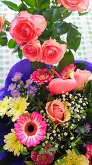"Beide Sträuße - Happy Valentine's Day"" (eagle1effi) Tags: happy valentines day valentinstag blumen blumenstrauss bouquet straus valentino saint s7 ppc selectivefocus smartphone celly samsung"