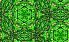 Van Nutt's Psychedelic Lightshow (micky the pixel) Tags: kunst art digital psychedelic kaleidoskop kaleidoscope blätter leaves folie ohp illumination lightshow equipment vannutt mtp vannuttspsychedeliclightshow
