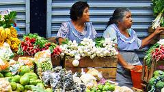 Vegetable Sellers (Querétaro 28 July 2007) (Carl Campbell) Tags: querétaro mexico women mercado market marché wtmw