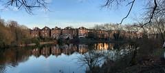 Panoramic pond (marc.barrot) Tags: shotoniphone panorama reflection pond nature landscape uk nw3 london hampstead hampsteadheath hampsteadn°2pond