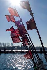 Fischers Sonne (petra.foto busy busy busy) Tags: fotopetra frühling februar sony travemünde ostsee schleswigholstein germany sonne fischer fischerboot sonnenlicht