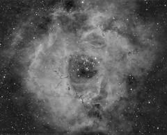 Rosette Nebula in H-Alpha (robfarmiloe) Tags: ngc2238 ngc 2238 rosette nebula space dso astrophotography astronomy atik one 60 ts optics tsa 65q quad telescope