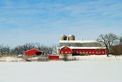 Southern Wisconsin Farm (Cragin Spring) Tags: wisconsin wi rural unitedstates usa unitedstatesofamerica snow winter farming farm red walworthcounty southernwisconsin sky silo field tree