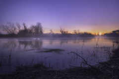 Colorful sunrise on Sile (Maurizio Fecchio) Tags: sunrise morning landscape water fog trees light river nature swan atmosphere lights alba paesaggio