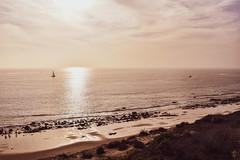Crystal Cove State Park, CA (DClemm) Tags: crystalcove california pacificocean beach orangecounty nikond5600