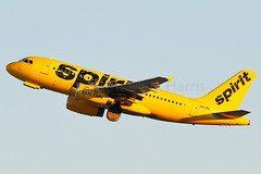 Spirit Airbus A319-132 N503NK (Mark Harris photography) Tags: spotting lax la canon 5d plane aviation