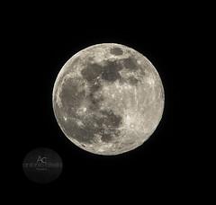 Equinox Supermoon (Antonio Ciriello PhotoEos) Tags: luna moon superluna supermoon super equinox equinozio equinoziodiprimavera springequinox spring primavera handheld freehand manolibera canon 70300 70300usm canon70300isiiusm canon70300 5d 5dmarkiv eos5dmarkiv canon5dmarkiv canoneos5dmarkiv canon5d taranto tramontone puglia apulia italia itally