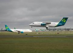 Aer Lingus                                          Avro RJ85                                     EI-RJD (Flame1958) Tags: aerlingus aerlingusrj85 aerlingusrebranding aerlingusnewlivery eirjd bae146 146 bae avro146 rj85 dub eidw dublinairport 210319 0319 2019 84502