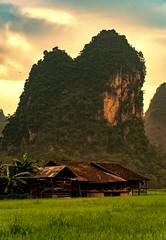 Phia Thap Village (Rod Waddington) Tags: asia asian vietnam vietnamese village valley rice houses traditional ethnic ethnicity minority landscape karst mountains sunrise phia thap happyplanet asiafavorites