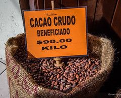 2018 - Mexico - Oaxaca - Cacao Crudo (Ted's photos - Returns late Feb) Tags: 2018 cropped mexico nikon nikond750 nikonfx oaxaca tedmcgrath tedsphotos tedsphotosmexico vignetting cacao cacaocrudo