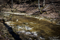 Stream to Falls (Aaron Hufnagel) Tags: nikon nikond600 d600 tokina tokina2870mm tokinaatx atx 2870mm madison madisonindiana cliftyfalls cliftyfallsstatepark indianastatepark statepark nature outdoor water creek stream waterfalls falls tree trees