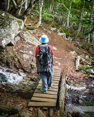 De tornada cap a casa (Joan Romero) Tags: sony sonyflickraward sonya100 camino benasque sendero puente agua bosque pasarela ngc